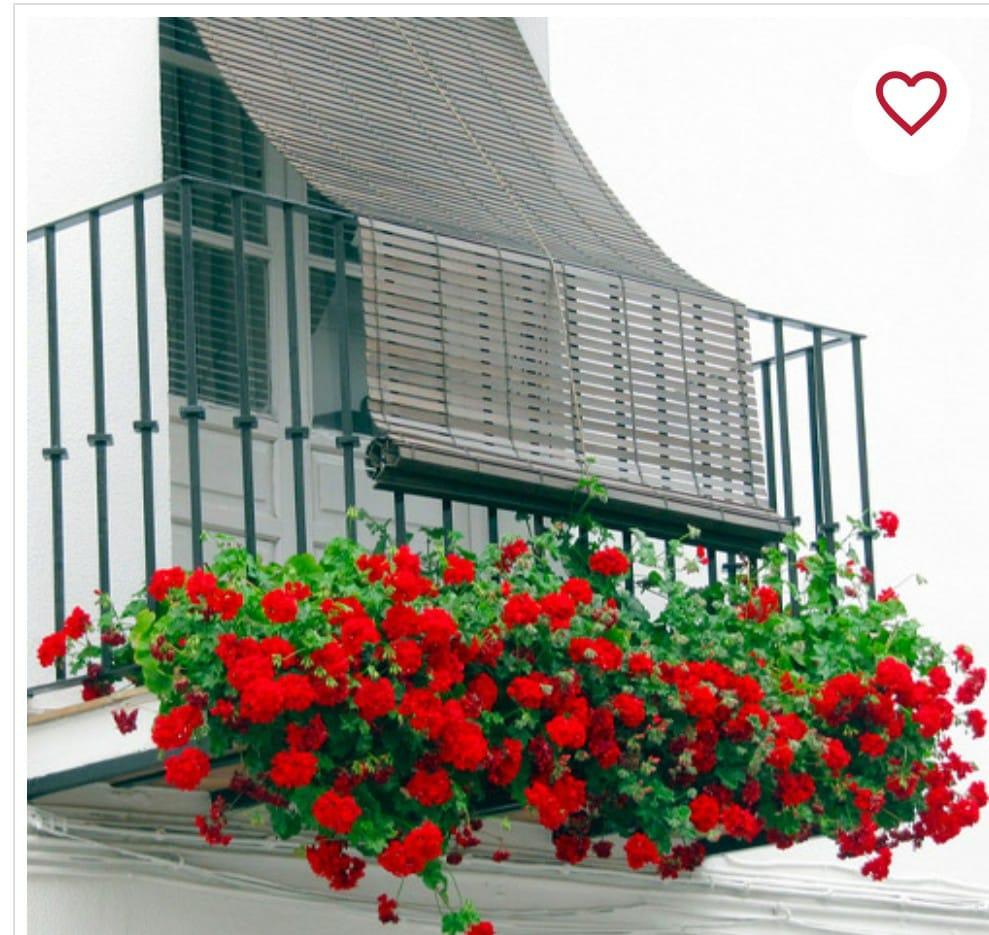 persianas florencia de madera persianas centro madrid